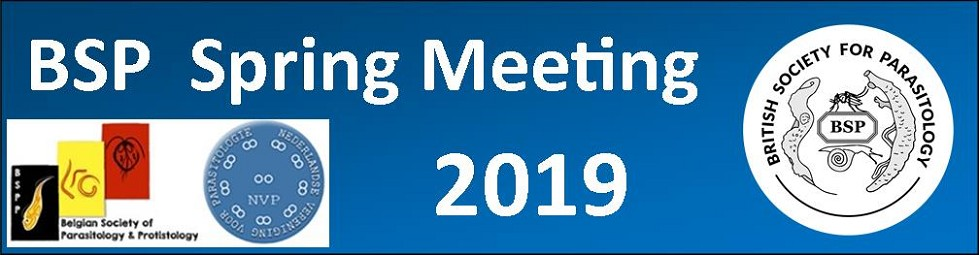 BSP Spring Meeting 2019